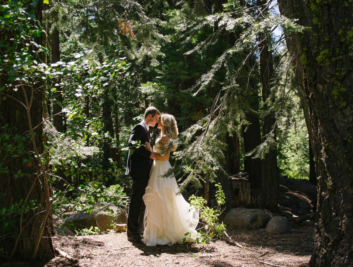 Lake Tahoe wedding Photo in the Forest