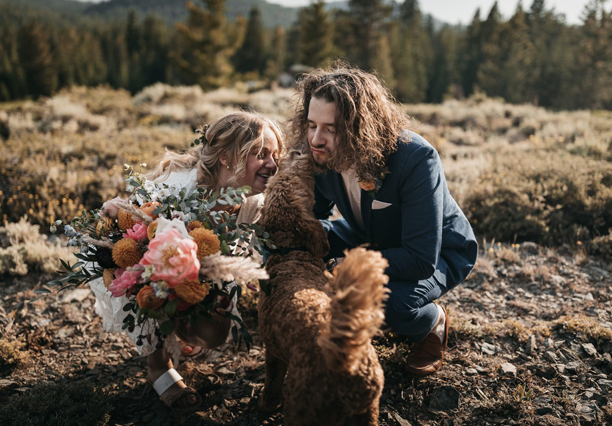 Lake Tahoe Elopement - the newlyweds with dogs