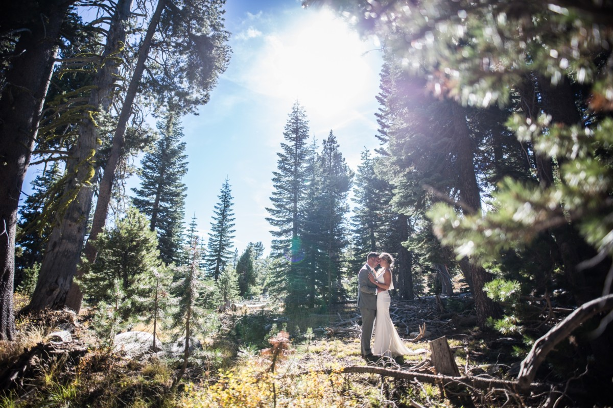 Jeramie Lu Photography - Lake Tahoe wedding couple in forest