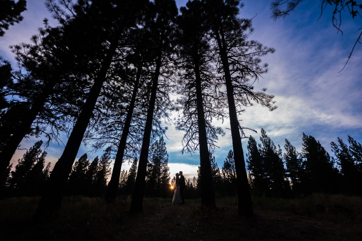 Jeramie Lu Photography - Lake Tahoe wedding couple in forest at sunset