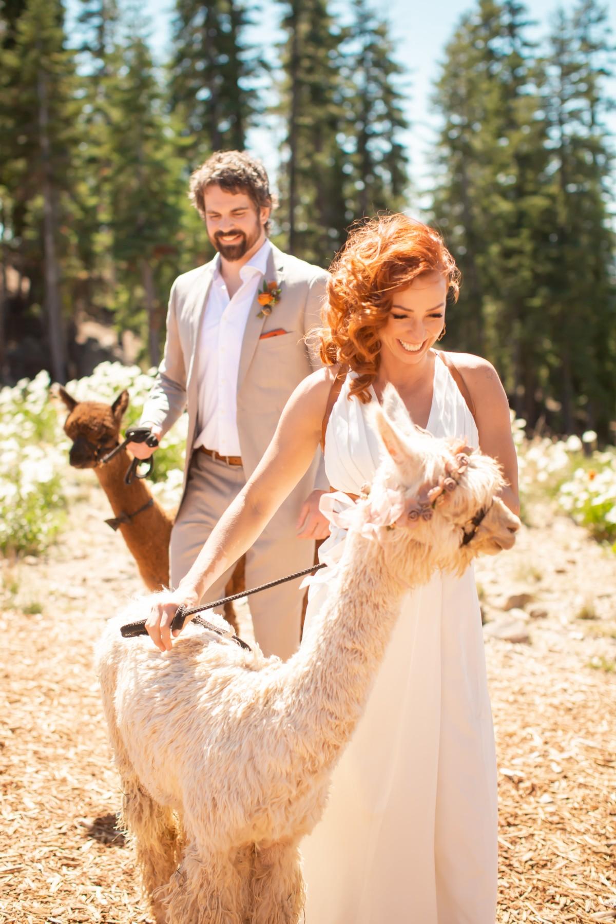 Nancy Rice Artistry - Lake Tahoe wedding hair & makeup - couple walking with llamas