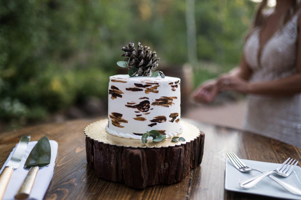 Forest Wedding near Lake Tahoe - a personal sized wedding cake