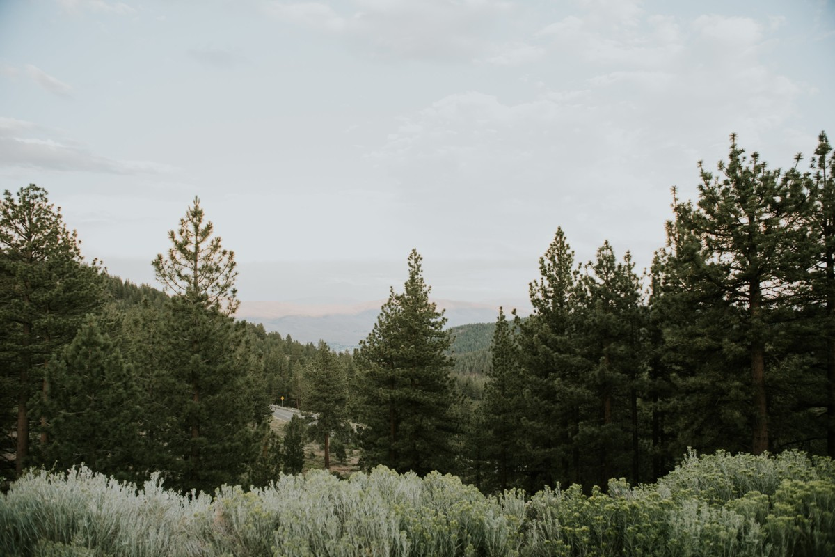 Tannenbaum by Roundabout Lake Tahoe wedding - view