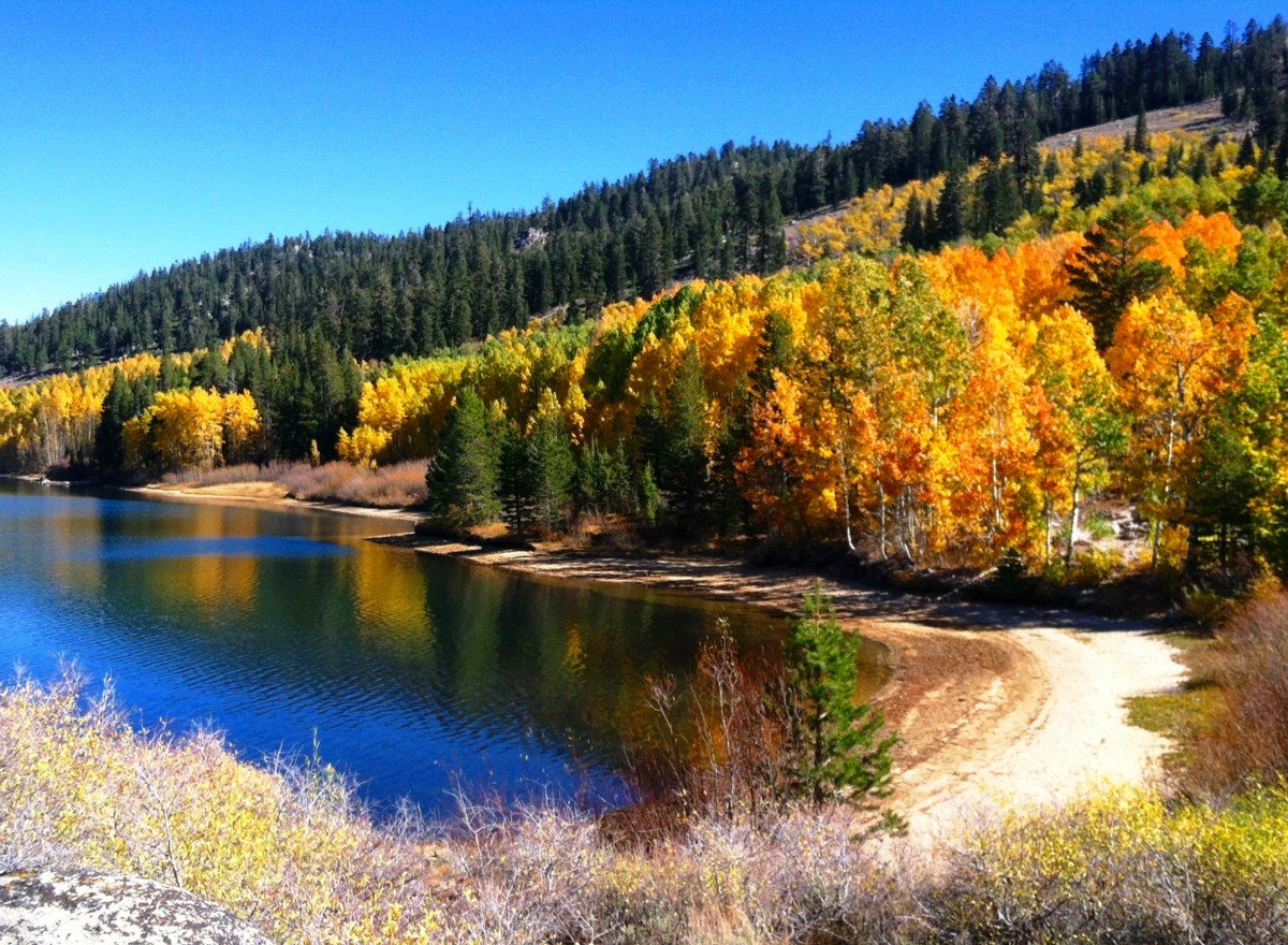 Fall Color Marlette Lake near Lake Tahoe